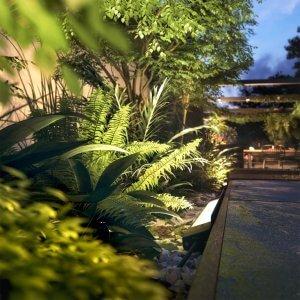 Philips hue amarant tuin
